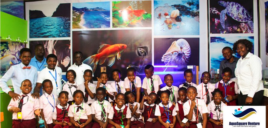 Trip to Aqua Square Aquarium in Lagos