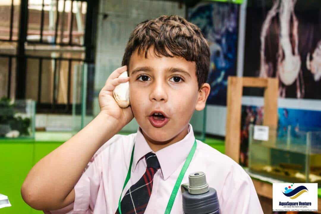 Primary school boy in Pinefields Schools
